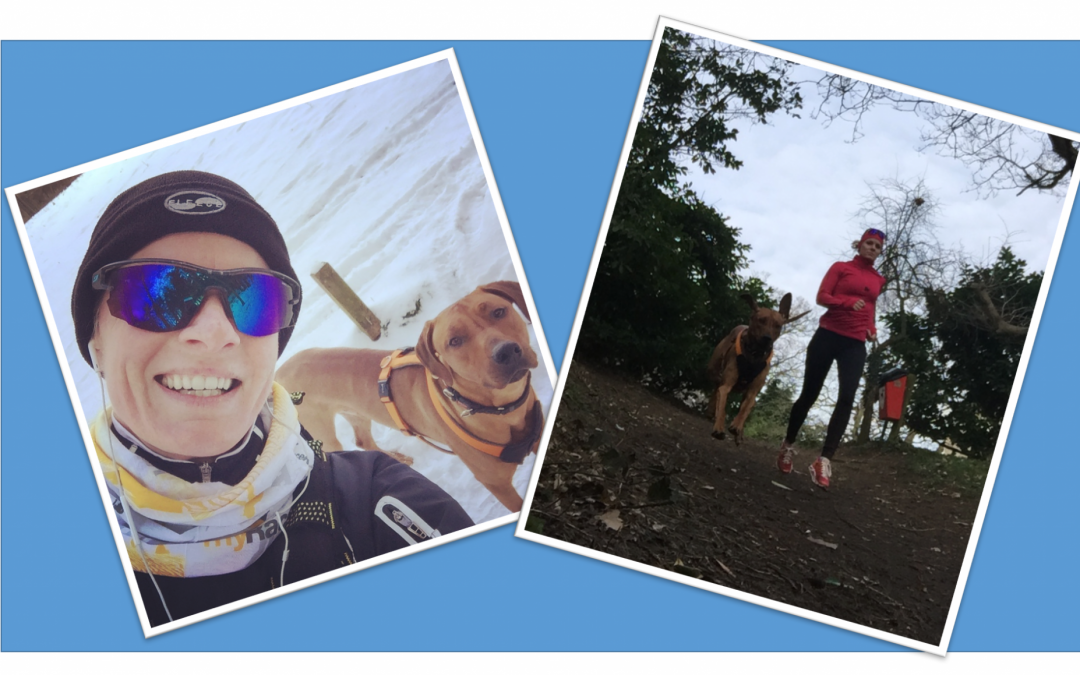 7 tips on getting the best out of running with your dog