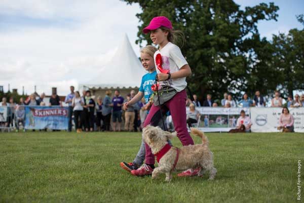 What's on at Suffolk Dog Day 2019!